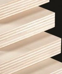 Multilayer panels of poplar plywood