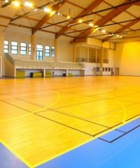 Omnisports heterogeneous vinyl flooring